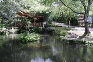 赤倉の森キャンプ場 1